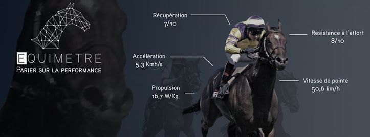 Equimètre Can Help The Racehorses Against Fatal Injuries