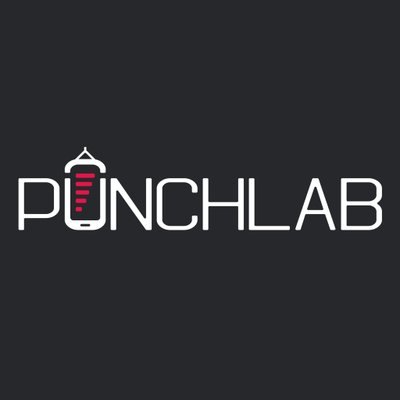 Do You Think You Can Shape The Future Of Boxing Training? PunchLab